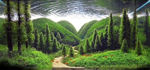 Aquascape whisper of pines